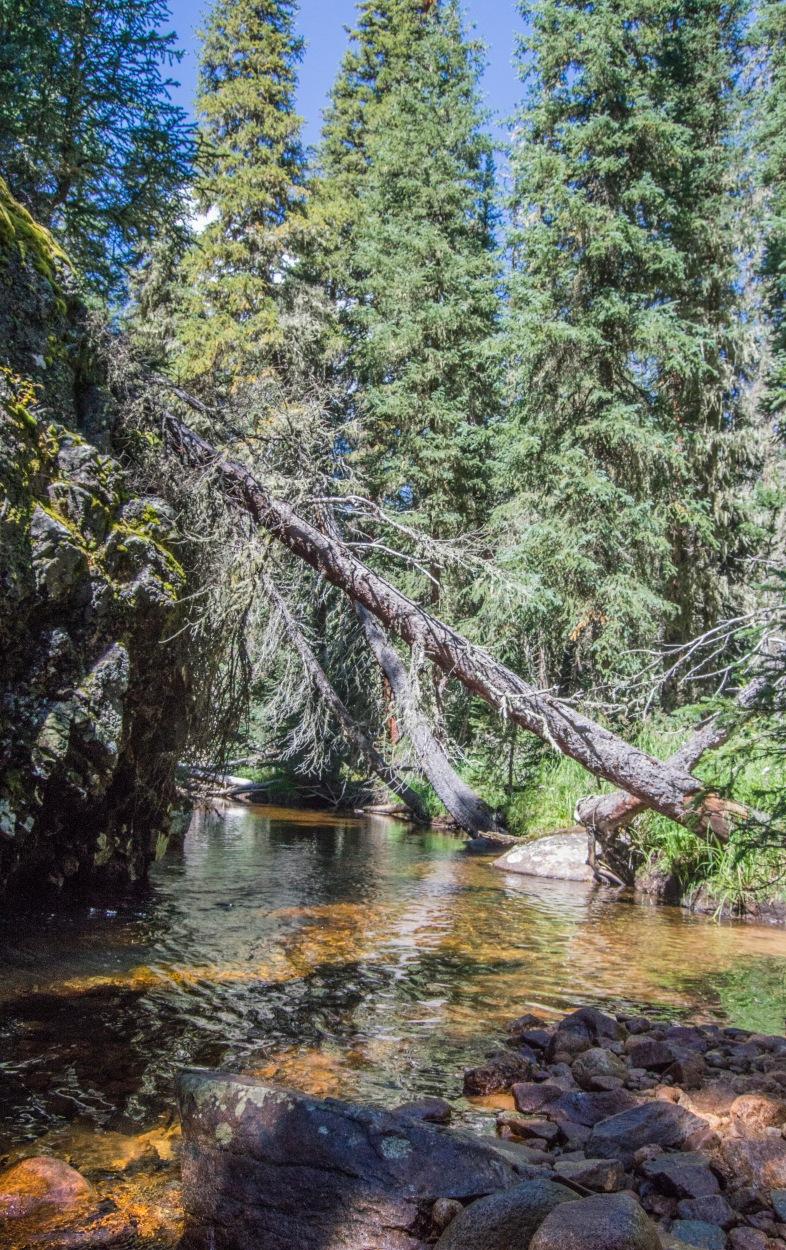 colorado stream